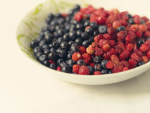 Fresh strawberry and blueberry Stock Photography