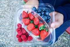 Fresh strawberry blueberry raspberry in pack in man hand. Very yummy Royalty Free Stock Images
