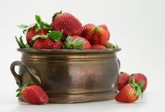 Fresh strawberry in brassy tub. Fresh organic red strawberry old brassy tub isolated Stock Photography