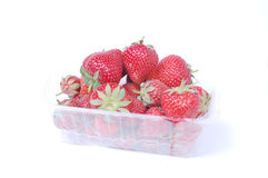 Fresh strawberry in can Royalty Free Stock Photo