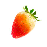 Fresh Strawberry. Close-up Stock Photography