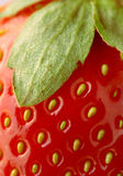 Fresh strawberry - closeup. Details and textures of a fresh strawberry Royalty Free Stock Photo