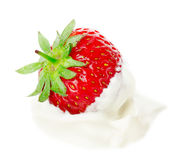 Fresh strawberry with cream isolated on white background Royalty Free Stock Photography
