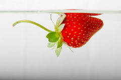 Fresh strawberry dropped into water with splash Royalty Free Stock Photos