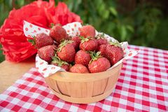 Fresh strawberry from farm. Ripe red strawberries on table. Harvest in garden, juicy strawberries, fruit, dessert, healthy, sweet, background, tasty, summer royalty free stock photo