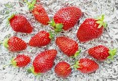 Fresh Strawberry on Foil Background Stock Photos