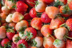 Fresh Strawberry. In food market Stock Photography