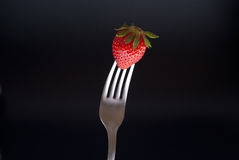 Fresh strawberry on fork Stock Photography