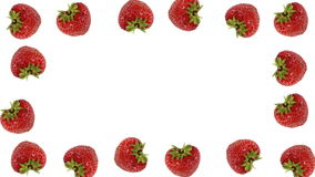 Fresh strawberry frame. On white background - loopable animation stock video footage
