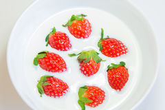 Fresh strawberry in fresh milk Stock Photos