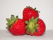 Fresh strawberry. On white isolated background Royalty Free Stock Photography