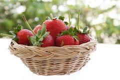 Fresh strawberry fruit on basket. Wooden stock photography