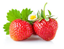 Fresh strawberry with green leaf and flower Royalty Free Stock Image