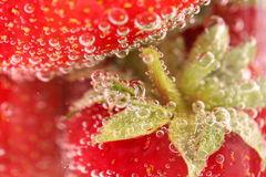 Fresh Strawberry, green tail, boobles. Royalty Free Stock Images