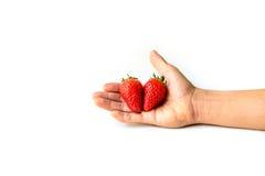 Fresh Strawberry on hand Royalty Free Stock Image