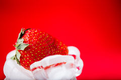 Fresh strawberry in ice on red background Royalty Free Stock Image