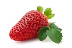 Fresh strawberry isolated (macro) Stock Image
