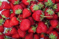 Fresh strawberry isolated on white. Royalty Free Stock Photos