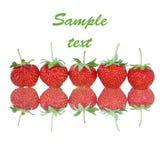 Fresh strawberry isolated on white Stock Image
