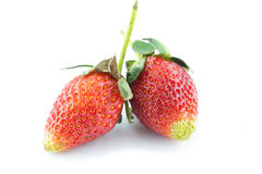 Fresh strawberry isolated on white background Royalty Free Stock Photos