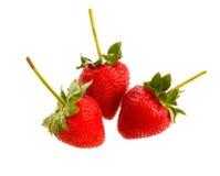 Fresh strawberry  isolated on white background Stock Image