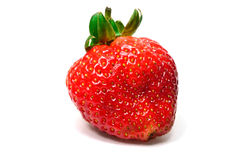 Fresh strawberry isolated on white background Royalty Free Stock Photography