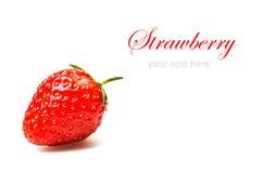 Fresh strawberry isolated on white background Stock Photography