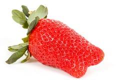 Fresh strawberry isolated on white Royalty Free Stock Photo