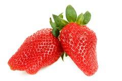 Fresh strawberry isolated on white Royalty Free Stock Photography