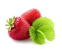 Fresh strawberry. Royalty Free Stock Photo