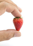 Fresh strawberry in man hand isolated on white background Royalty Free Stock Photography