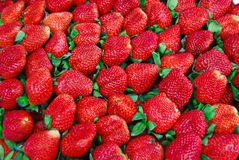 Fresh strawberry in market. Closeup background , Asia , Thailand stock photo