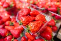 Fresh Strawberry Market Stock Image