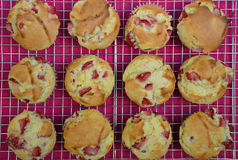Fresh strawberry muffins Royalty Free Stock Photos