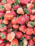 Fresh strawberry. Organic Strawberry background Stock Photos