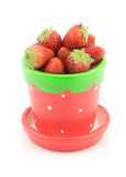 Fresh strawberry in pot  on white background Royalty Free Stock Image