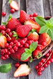 Fresh strawberry and redcurrant in a basket Royalty Free Stock Photos