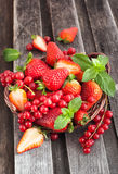 Fresh strawberry and redcurrant in a basket Royalty Free Stock Image