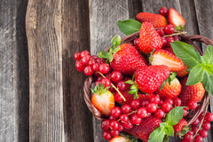 Fresh strawberry and redcurrant in a basket Stock Photos