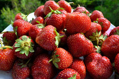 Fresh strawberry's on the plate Royalty Free Stock Photo