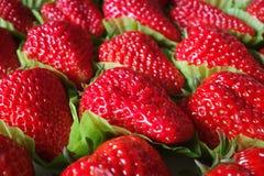 Fresh strawberry on sale