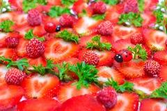 Fresh strawberry slices and ladybugs Stock Photo