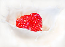 Fresh strawberry splashing into milk or yogurt Royalty Free Stock Photos