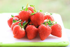Fresh strawberry, sweet fruits, on the white plastic chopping board. Royalty Free Stock Image