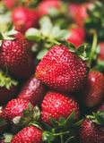 Fresh strawberry texture, wallpaper and background, selective focus Stock Photos