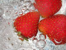 Fresh strawberry in water Royalty Free Stock Photography