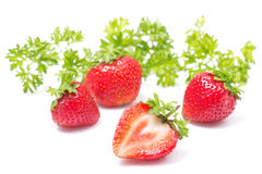 Fresh strawberry on a white background Royalty Free Stock Image
