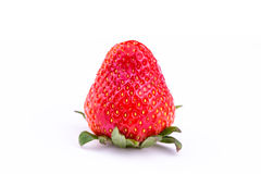 Fresh strawberry  on white background. Royalty Free Stock Photography