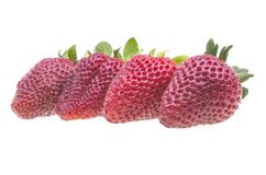 Fresh strawberry on white Royalty Free Stock Photo
