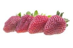 Fresh strawberry on white Royalty Free Stock Photo